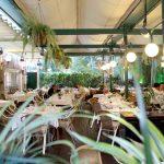 terraza climatizada-Restaurante La Española-Pozuelo
