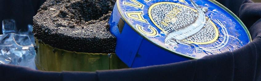 Historia del Caviar
